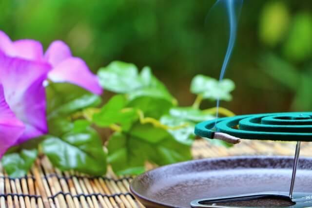 蚊取り線香の効果な使い方を知っていますか?蚊取り線香の正しい使い方