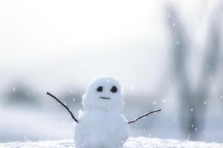 庭木を伐採するのに適した時期は冬がオススメです!