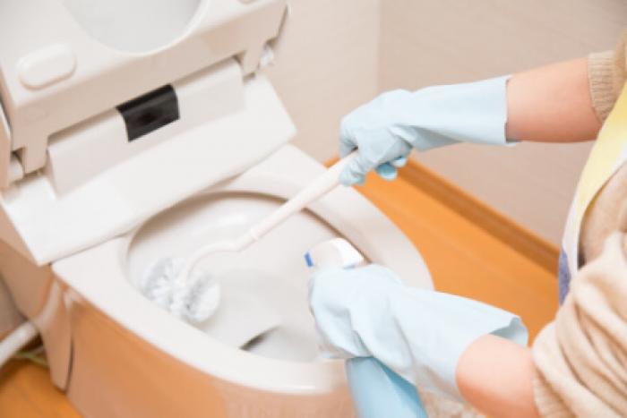【ペット葬式の費用相場】火葬・供養の方法別で見るペット葬式の費用