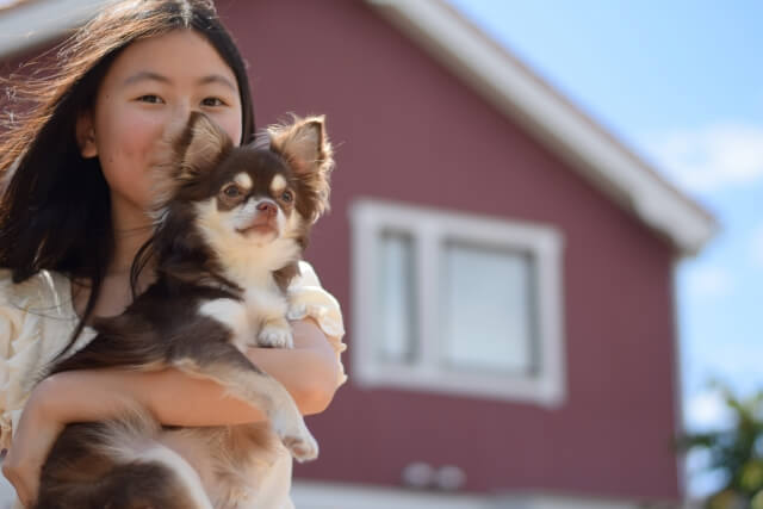 犬の寿命は何歳くらい?愛犬の寿命を一日でも長くするための生活習慣