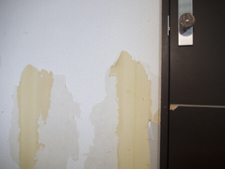 【ペット壁紙】ペットに傷つけられた壁紙の傷の種類を知ろう!