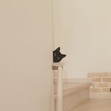 【ペット壁紙】ペットに傷つけられるのは壁紙だけじゃない!