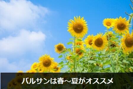 【バルサンの使用時期】春~夏はバルサンを使うオススメの季節