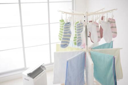 【窓掃除】カビを生やさないために4つの予防方法をしよう!