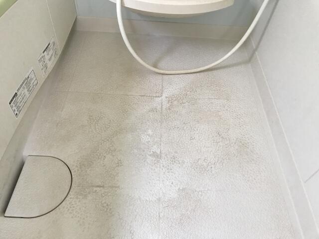 【お風呂の排水口】お風呂が汗臭い時は壁や床が原因かも!?