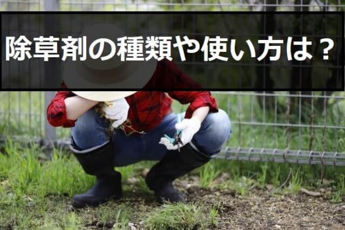 効果抜群!おすすめの除草剤5選を紹介!除草剤の種類と選び方も解説します