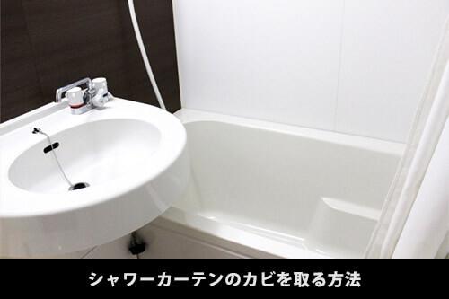 お風呂のシャワーカーテンのカビを取る必要な準備物