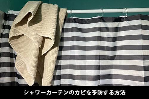 【シャワーカーテン】お風呂のシャワーカーテンを掃除する方法