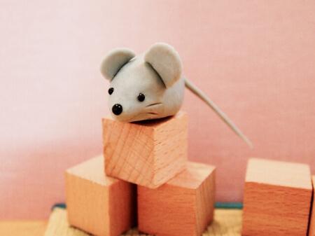 【ネズミの駆除】ネズミ駆除する前に種類と特徴を知ろう!
