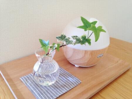 【エアコンで花粉対策】エアコンフィルターを掃除しよう!