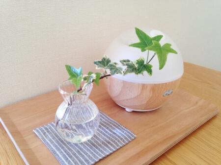 【エアコンで花粉対策】他の家電と併用して花粉症対策しよう!