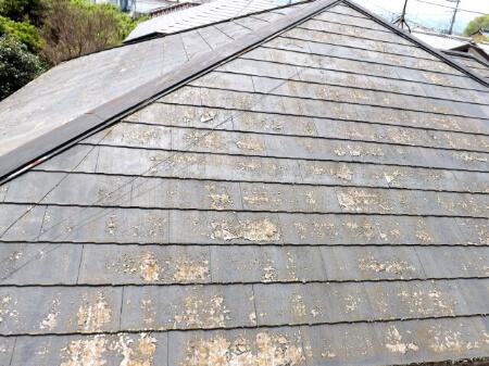 屋根塗装の前に確認しておくこと