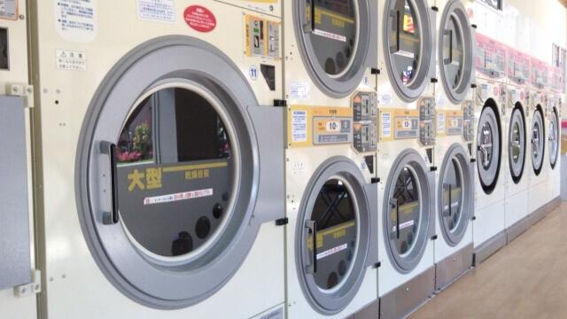コインランドリーの大型乾燥機を使って死滅させる方法