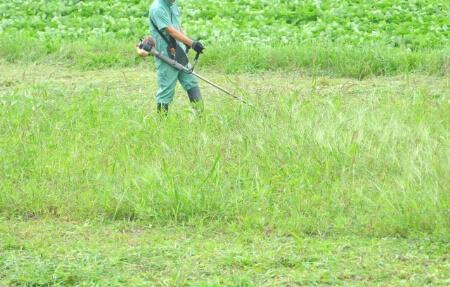【草刈りの道具】草刈り機を使って草刈りする時の2つのポイント