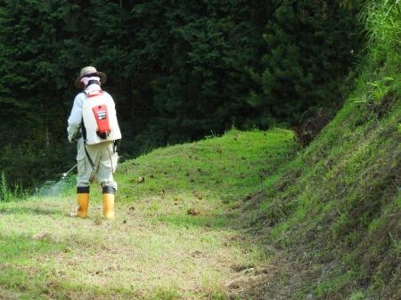 【雑草対策】防草シートを使って完璧に雑草を生やさない方法