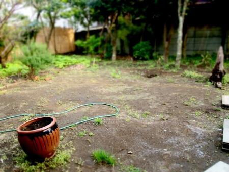 ウッドチップやバークチップで雑草を生やさない方を知ろう!