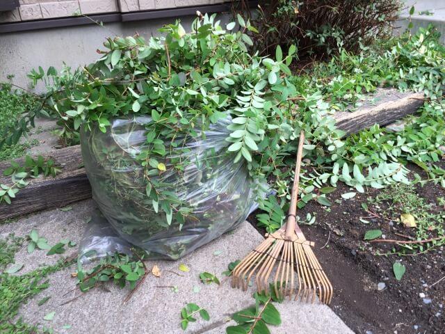 草むしりは道具使って楽にしよう!便利な草むしりの道具をまとめて紹介