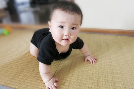 【畳の張替え】畳を長持ちさせる6つのポイントを知ろう!