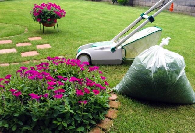 芝生に生えた雑草対策しても水やりや肥料も忘れずにしよう!