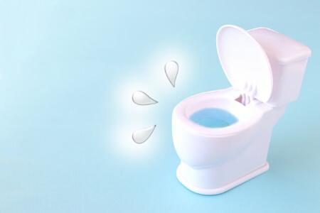 トイレに出る「紙魚」と「チョウバエ」の特徴を知ろう!
