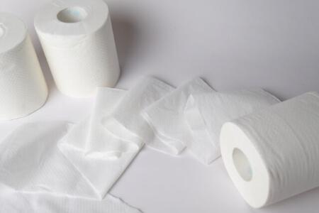 【トイレの紙魚】粘着シートで紙魚(しみ)を駆除する方法