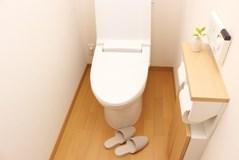 トイレの掃除は重曹とクエン酸でOK!【厳選】トイレ掃除の用品を紹介