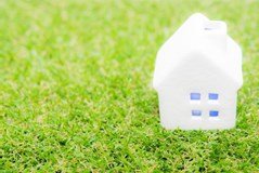 【芝生の種類】芝張りする前に芝生の種類と特徴を知っておいた方がいい!