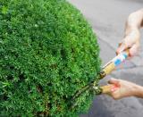 ◎迅速・丁寧・親切◎不用品回収・単身引っ越し・庭木の手入れなどお任せ下さい