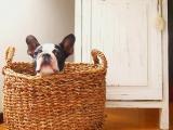 お客様目線で最適なプランをご提案します!土日祝も対応可能! shop2896
