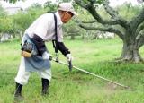 ★お伺いエリア最安値を目指します!剪定・草刈り お気軽にお問い合わせ下さい。