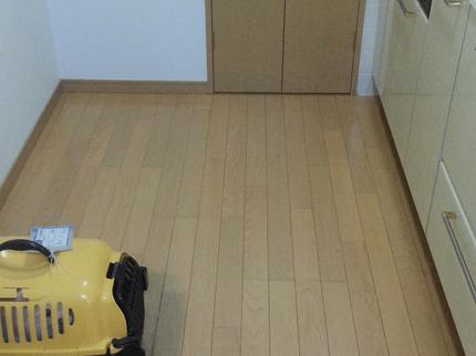 ★今だけカビ防止コート半額!!