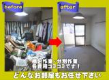 shop311