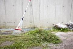 【クレカOK!】お庭の雑草をスッキリ綺麗に!