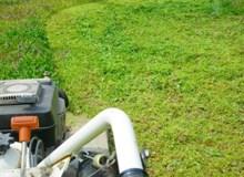 【年中無休!】女性スタッフも同行OK!草刈りなら陽気屋本舗へ!