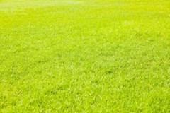 〈地域密着〉手作業で丁寧に!お庭の雑草ゼロへ!